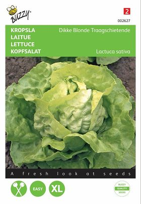 Lettuce seeds Paresseuse