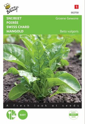 Green Perpetual Spinach seeds