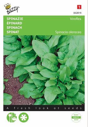 Spinach seeds Viroflex