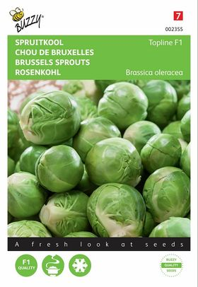 Brussels Sprouts Seeds hybrid