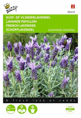 Topped Lavender flower seeds