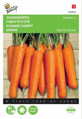 Summer Carrot Nantes seeds