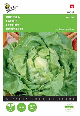 Lettuce seeds Appia