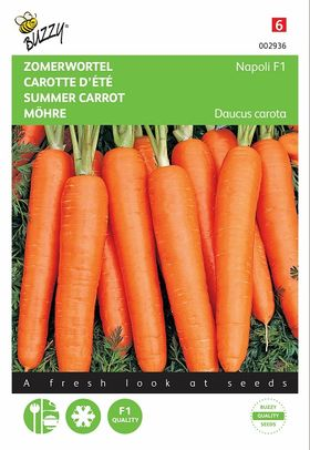 Summer Carrot Seeds F1
