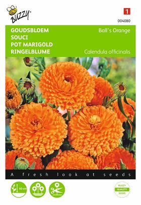 Pot Marigold,Ball's Orange