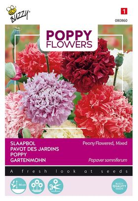 Poppy Paeony Flowered