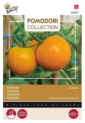 Pomodori Tomato Arancia