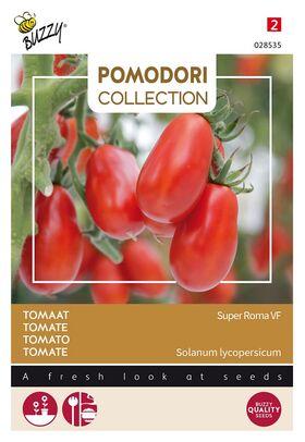 Pomodori Tomato Super Roma VF