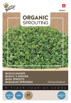 Organic Basil Sprouts Cut and Eat