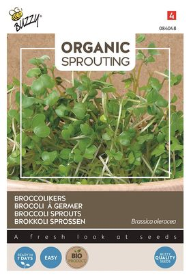 Organic Broccoli sprouts Cut and Eat