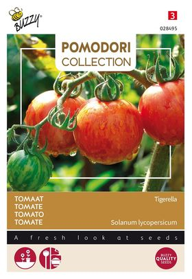 Pomodori Tomato Tigerella