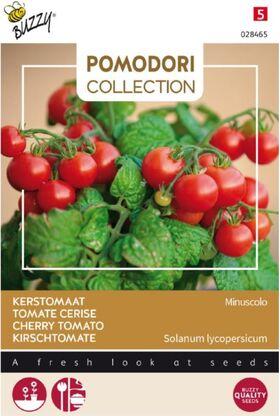 Pomodori Tomato Minuscolo